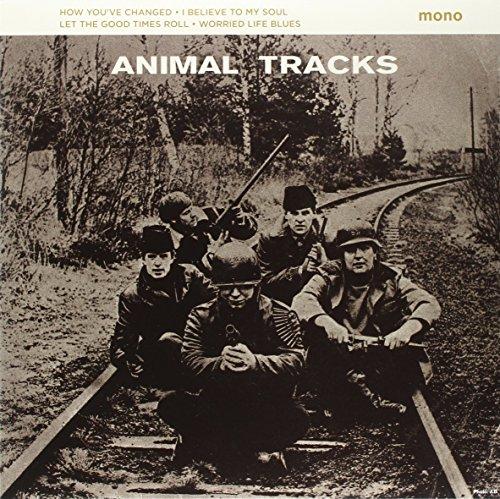 Animal Tracks [10 inch Analog]