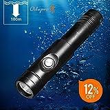 Odepro WD12 1050ルーメン 高輝度 IPX8級防水ダイビングライト ダイビング懐中電灯 充電可能 100M使用可水中ライト