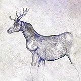 馬と鹿 (通常盤) (特典なし)