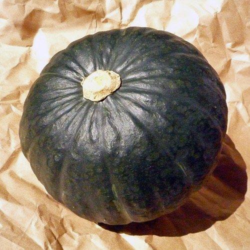 北海道産 栗味かぼちゃ 3玉 (合計5kg以上) 北海道産かぼちゃ