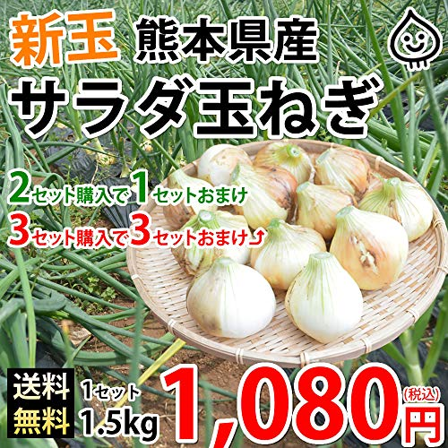 玉ねぎ サラダ玉ねぎ 送料無料 新玉 1.5kg 約7玉前後~約12玉前後 S~L 熊本県産 2セットで1セットおまけ 3セットで3セットおまけ 玉葱 たまねぎ 野菜