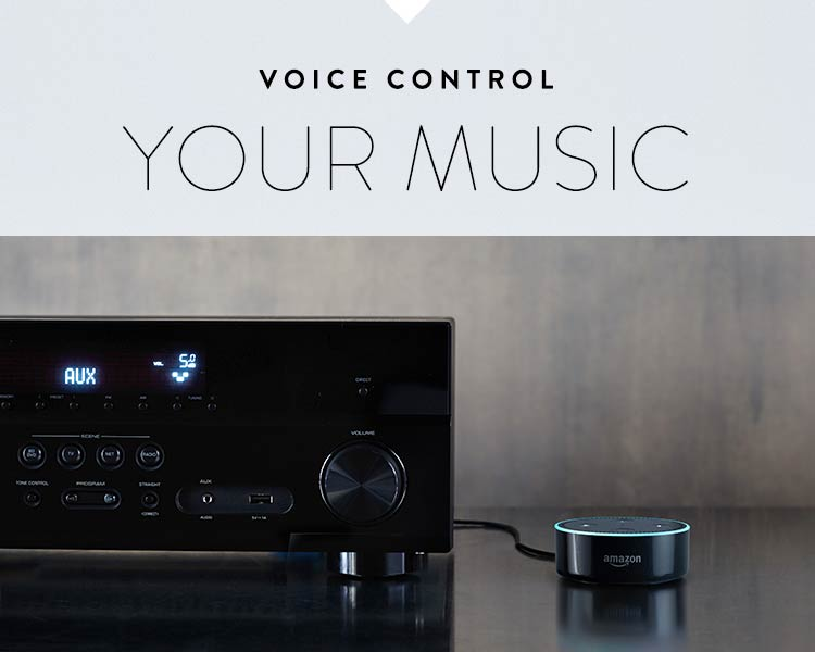 Voice control your music.