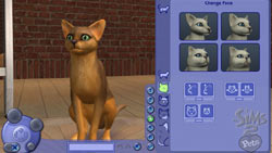 Customizing the appearance of a cat in The Sims 2 Pets Expansion Pack