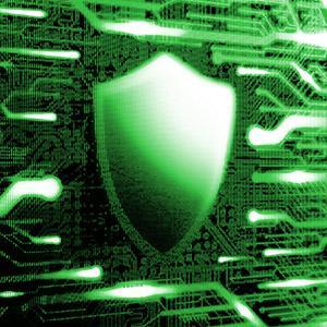 Auf 3 Jahre beschränkte Garantie - WD Green SSD
