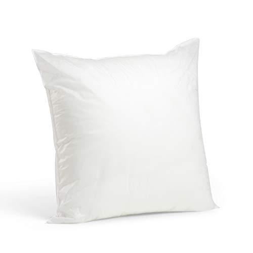 Foamily Premium Hypoallergenic Stuffer Pillow Insert Sham Square Form Polyester, 20' L X 20' W, Standard/White