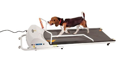 GOPET Treadmill SmallMedium (