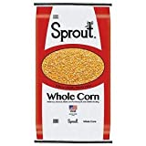 Whole Corn - 50 Lb. | Made in the USA