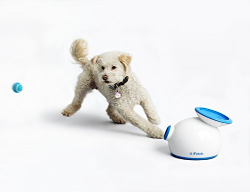 iFetch Interactive Ball Launcher for Dogs - Launches Mini Tennis Balls, Small