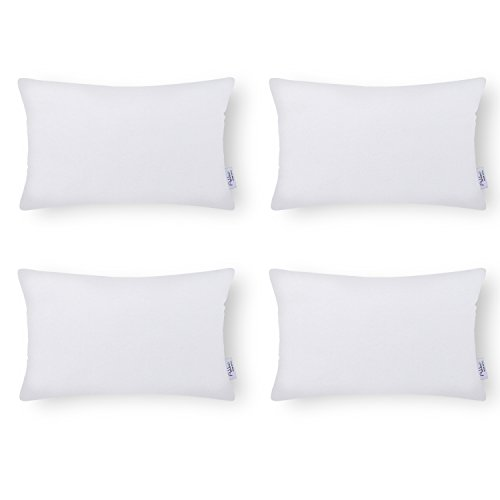 Ashler Set of 4 Hypoallergenic Throw Pillow Inserts Standard Square Polyester Sham 20' x 20'
