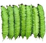 20 Winged Bean Seeds Vegetable Seeds