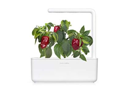 Click-and-Grow-Smart-Garden-Red-Sweet-Pepper-Plant-Pods-3-Pack