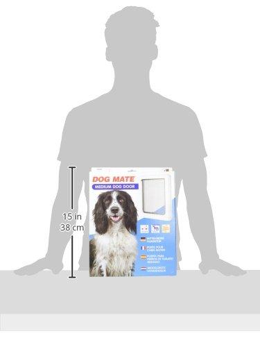 Dog Mate Medium Dog Door White The Dog Shop