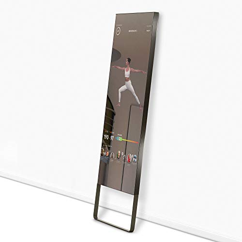 Mirror Home Fitness System