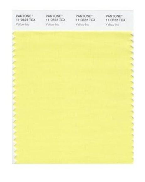 Resultado de imagen de yellow iris pantone