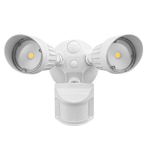LEONLITE LED Outdoor Security Light
