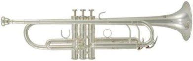 Roy Benson RBTR402S Bb Professional Trumpet