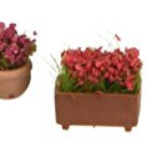 Noch 14031 Flowers in Pots Landscape Modelling 31wHlQH 2BiHL
