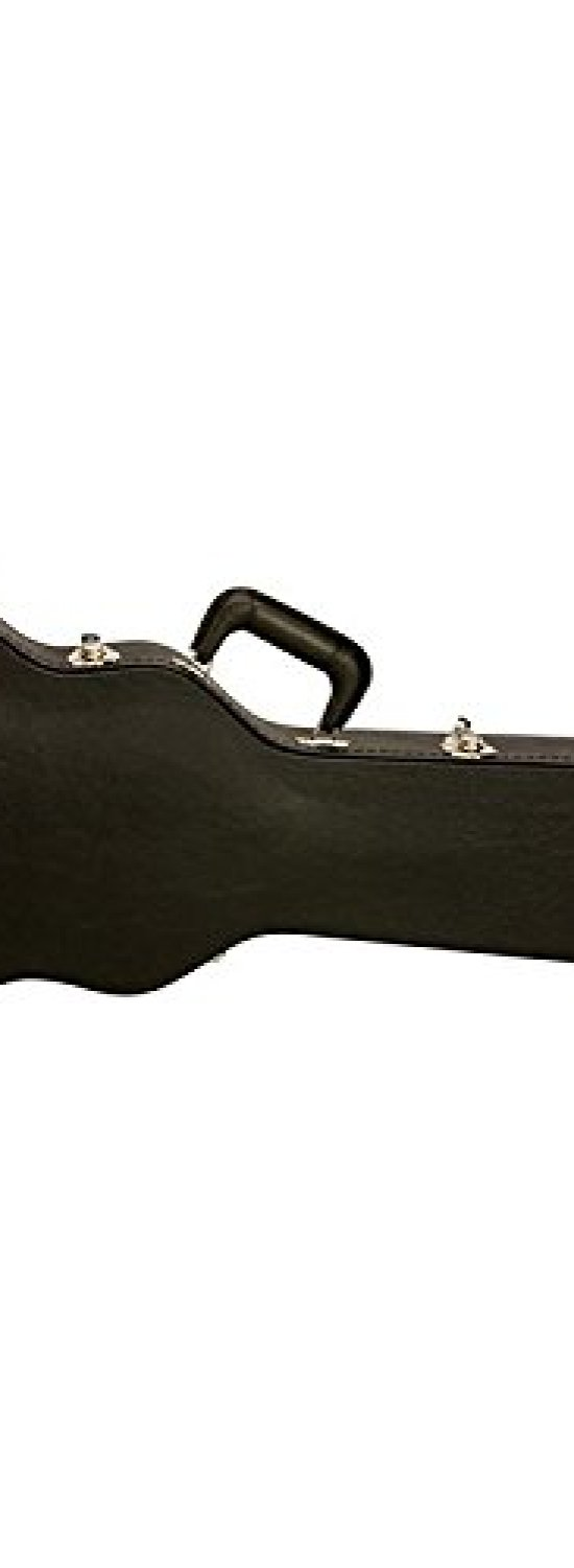 Gibson Les Paul Hard Case