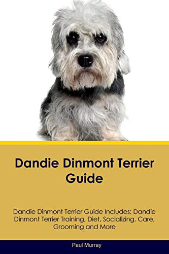 Dandie-Dinmont-Terrier-Guide-Dandie-Dinmont-Terrier-Guide-Includes-Dandie-Dinmont-Terrier-Training-Diet-Socializing-Care-Grooming-Breeding-and-More-Paperback--August-2-2016