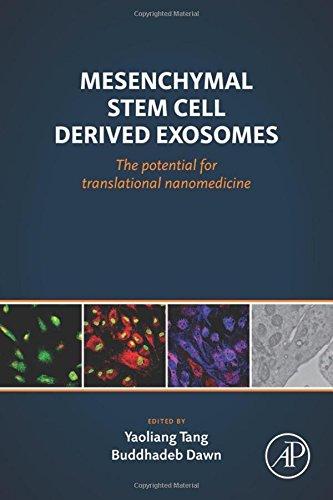 Mesenchymal Stem Cell Derived Exosomes: The Potential for Translational  Nanomedicine