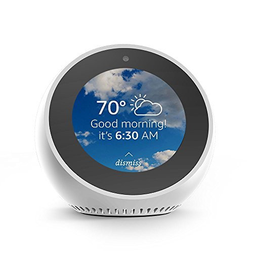 Introducing Echo Spot - White