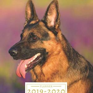 2019-2020: 16-Month Weekly and Monthly Planner/Calendar Sept 2019-Dec 2020 German Shepherd Dog 1