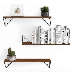 Wallniture Pigna Floating Shelves for Living Room Wall Decor, Bookshelf and Shelving Unit for Organization and Storage…