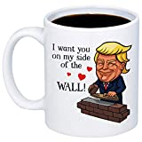 My Cuppa Joy Funny Trump Mugs - I Want You On My Side Of The Wall Coffee Mug - 11oz Cup For Husband, Boyfriend, Girlfriend, Wife, Best Friend, Dad, Mom - Anniversary, Valentine's Day, Birthday Gift