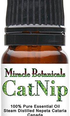 Miracle Botanicals Catnip Essential Oil – 100% Pure Nepeta...