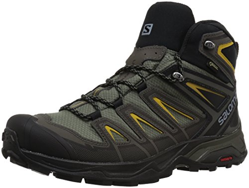 Salomon Men's X Ultra 3 Mid GTX Hiking Boot, Castor Gray, 10 M US