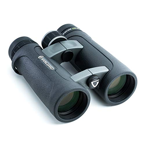 Vanguard Endeavor ED II 10x42 Binocular with Premium Hoya ED Glass, Waterproof/Fogproof