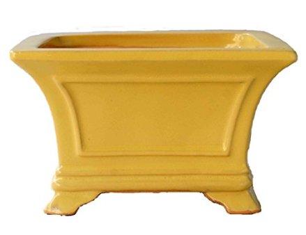 YUKIMONO Square Bonsai Pot, 6.0-Inch Yellow