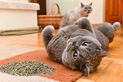 Cat Crack Organic Catnip, Premium Safe Nip Blend, Infused with Maximum Potency Your Kitty Will be Sure to Go Crazy for (3 Cups)