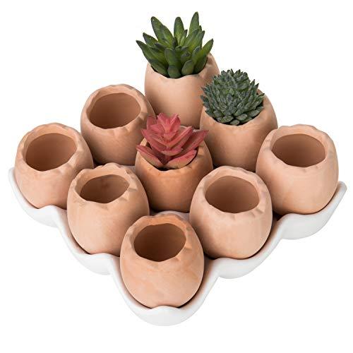 MyGift Adorable Set of 9 Brown Eggs Design Ceramic Succulent Planters/Mini Decorative Pots w/Tray