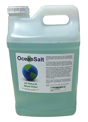 OceanSalt Organic Weed Killer