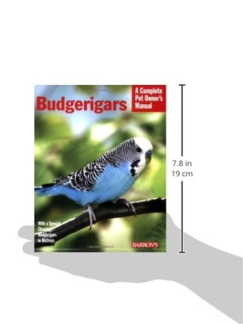 Budgerigars-Complete-Pet-Owners-Manual-Paperback--July-1-2008