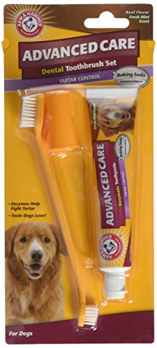 Arm & Hammer Tartar Control Dental Solutions for Dogs   Dog Toothpaste, Toothbrush, Water Additive & Dental Sprays   Vital to Your Dog's Health 2