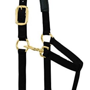 Weaver Leather Padded Adjustable Chin and Throat Snap Halter, 1″ Average Horse or Yearling Draft, Solid Black