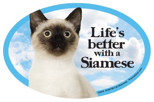 Prismatix Cat (Siamese) Oval Dog Magnet for Cars