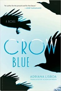 Image result for crow blue amazon