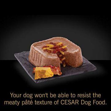 Cesar-Canine-Cuisine-Wet-Dog-Food
