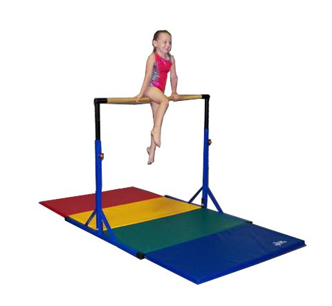 Team Sports Best Choice -Gymnastics Pro-Deluxe High Bar -Blue Paint (mat not Included)