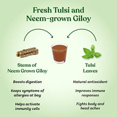 Kapiva-Wild-Tulsi-Giloy-Juice-1L-Ayurvedic-Juice-for-Building-Immunity-First-brand-to-use-Neem-Grown-Giloy-Stems-with-Fresh-Tulsi-Leaves-No-Added-Sugar