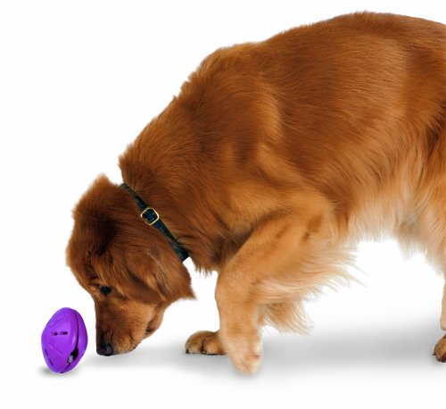 PetSafe Busy Buddy Twist 'n Treat, Treat Dispensing Dog Toy, X-Small, Small, Medium and Large Sizes 1