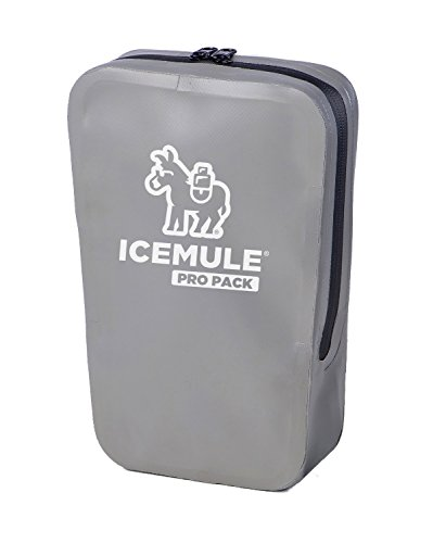 IceMule Pro Pack - Water Resistant Storage Pouch/Dry Bag for Keeping Your Valuables Safe and Dry - Ideal for Your Wallet, Keys, Cell Phone and Sunglasses - Grey, Measures 10 x 10 x 4 Inches