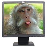 17' IBM ThinkVision L171 LCD Monitor (Black)