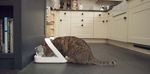 SureFlap-Sure-Petcare-SureFeed-Microchip-Pet-Feeder-Automatic-Pet-Feeder-Makes-Meal-Times-Stress-Free-Suitable-for-Both-Wet-and-Dry-Food