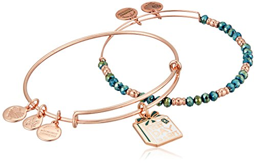 Alex and Ani Everyday is a Gift Set of 2 Bangle Bracelet