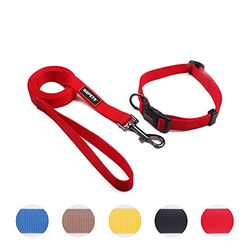 QQPETS Puppy Collar and Leash Set Dog Collars for Small Medium Big Dogs,...