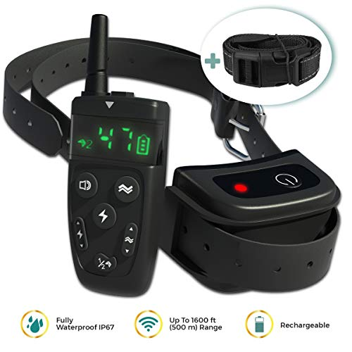 Dog Shock Training Collar with Remote